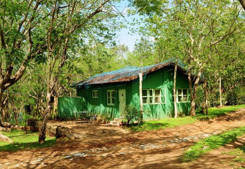 Mudumalai National Park, Mudumalai Wildlife Sanctuary, Mudumalai National Park Safari, Mudumalai National Park Resorts